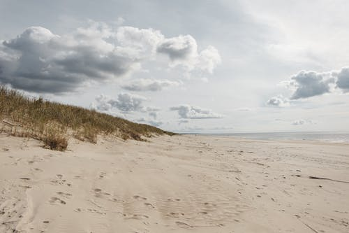 Sandy shore with grass against ocean under cloudy sky