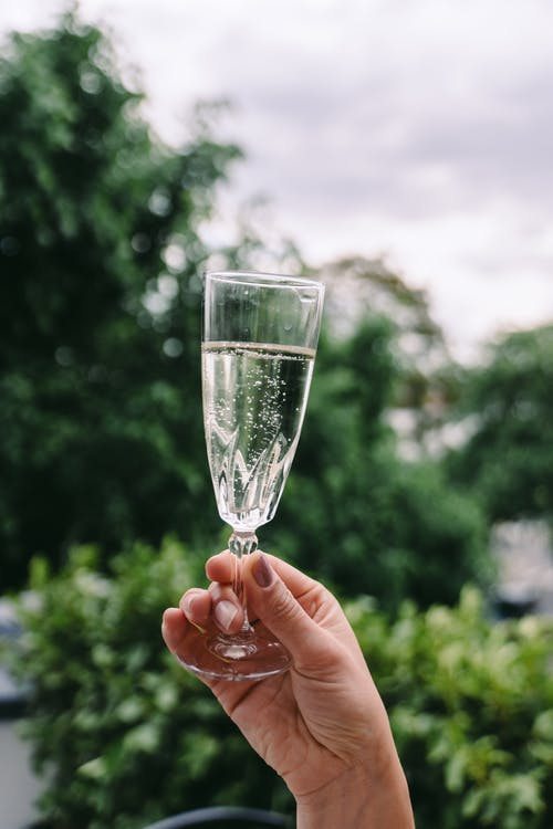 Crop unrecognizable female demonstrating elegant crystal glass of champagne against lush green trees in garden on cloudy day