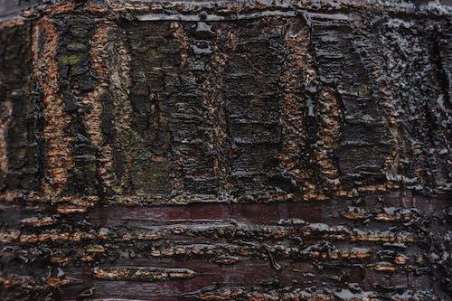 Fotos de stock gratuitas de abstracto, al aire libre, antiguo