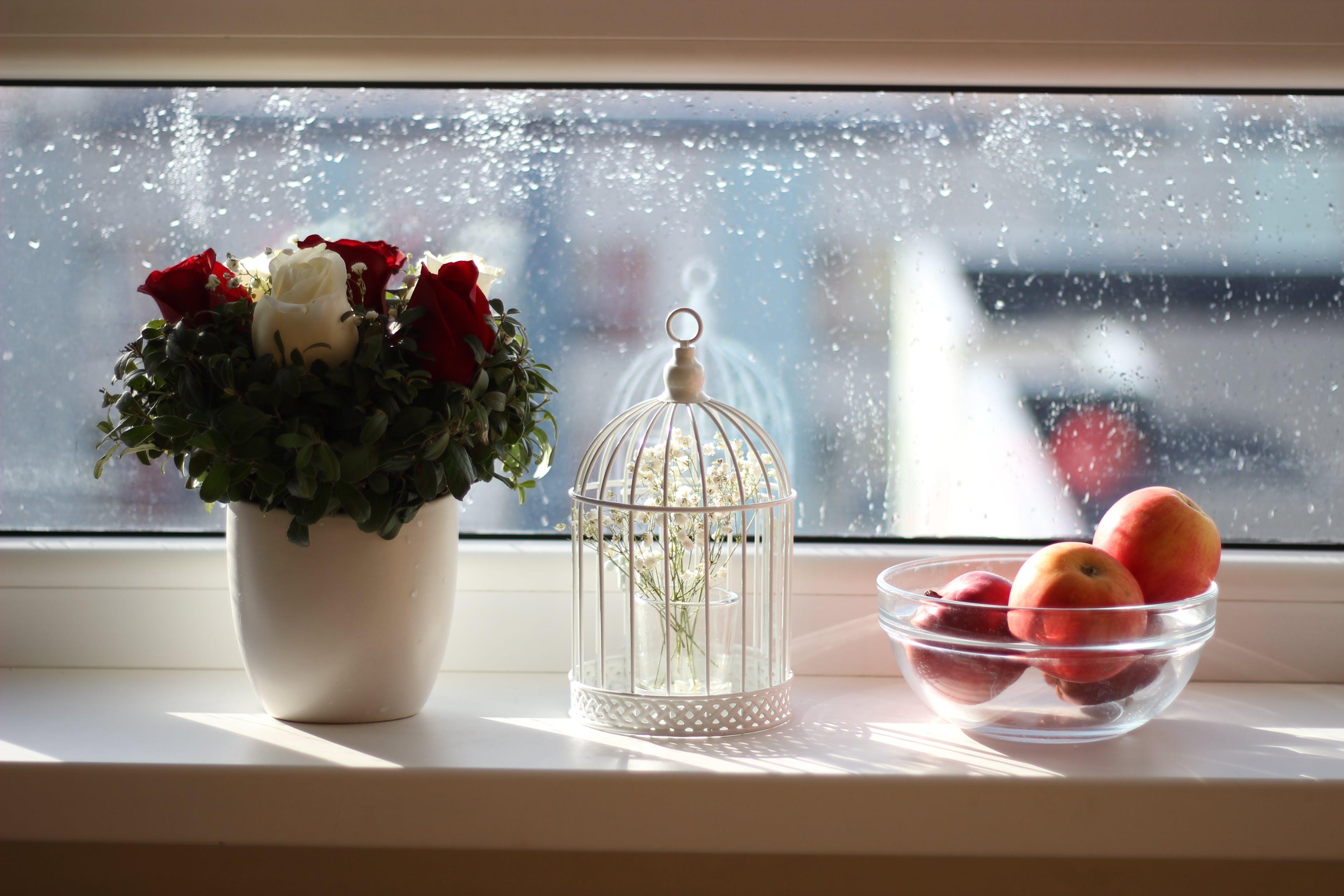 Kostenloses Stock Foto zu äpfel, blumen, dekor, dekoration