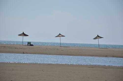 Free stock photo of nature, ombrella, sea