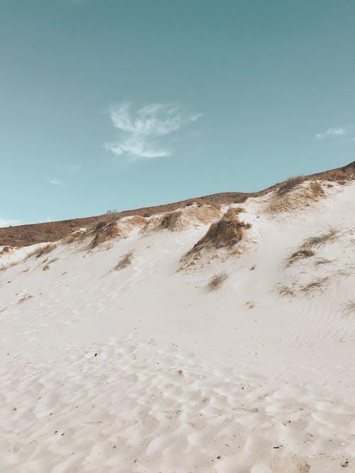 Free stock photo of adventure, balandra, beach