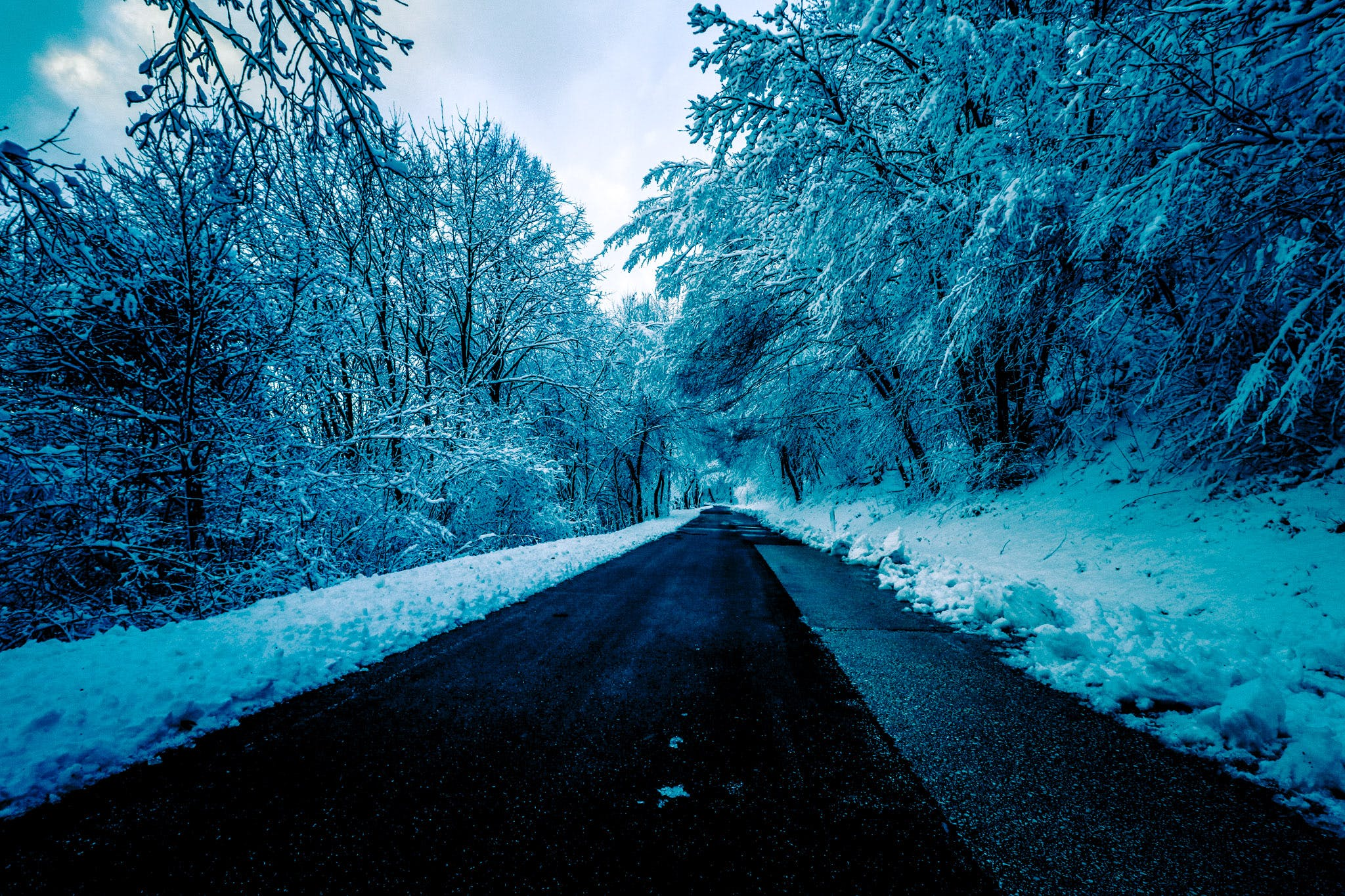 Black Concrete Road Surrounded by Trees With Snow