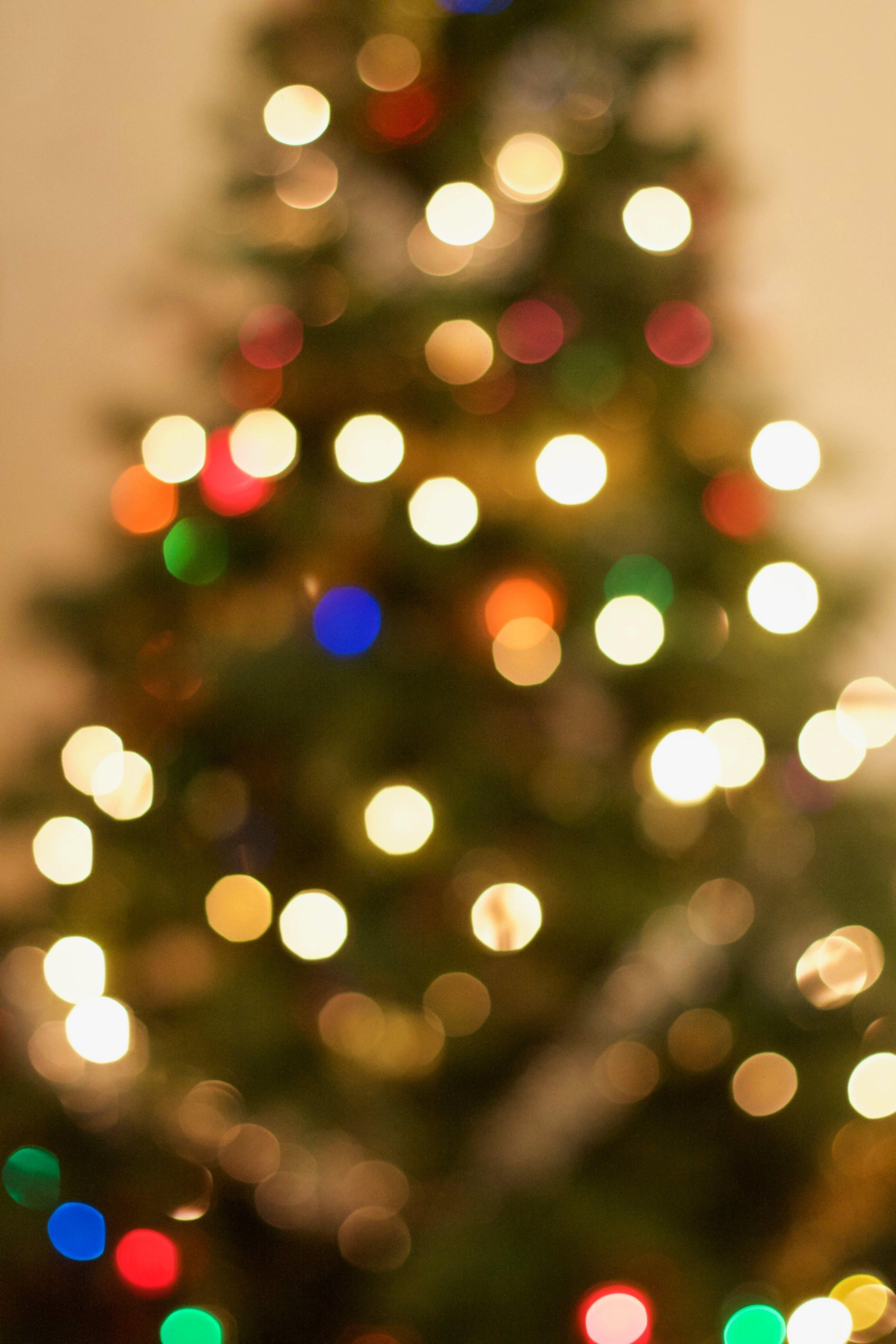Free stock photo of bokeh, christmas, christmas lights, christmas tree