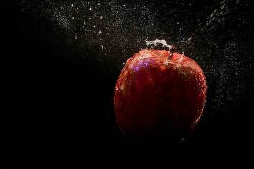 Gratis arkivbilde med apple, delikat, h2o, mat