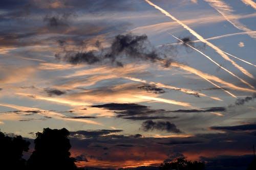 ケムトレイル, 夜明け, 日の出, 日暮れの無料の写真素材