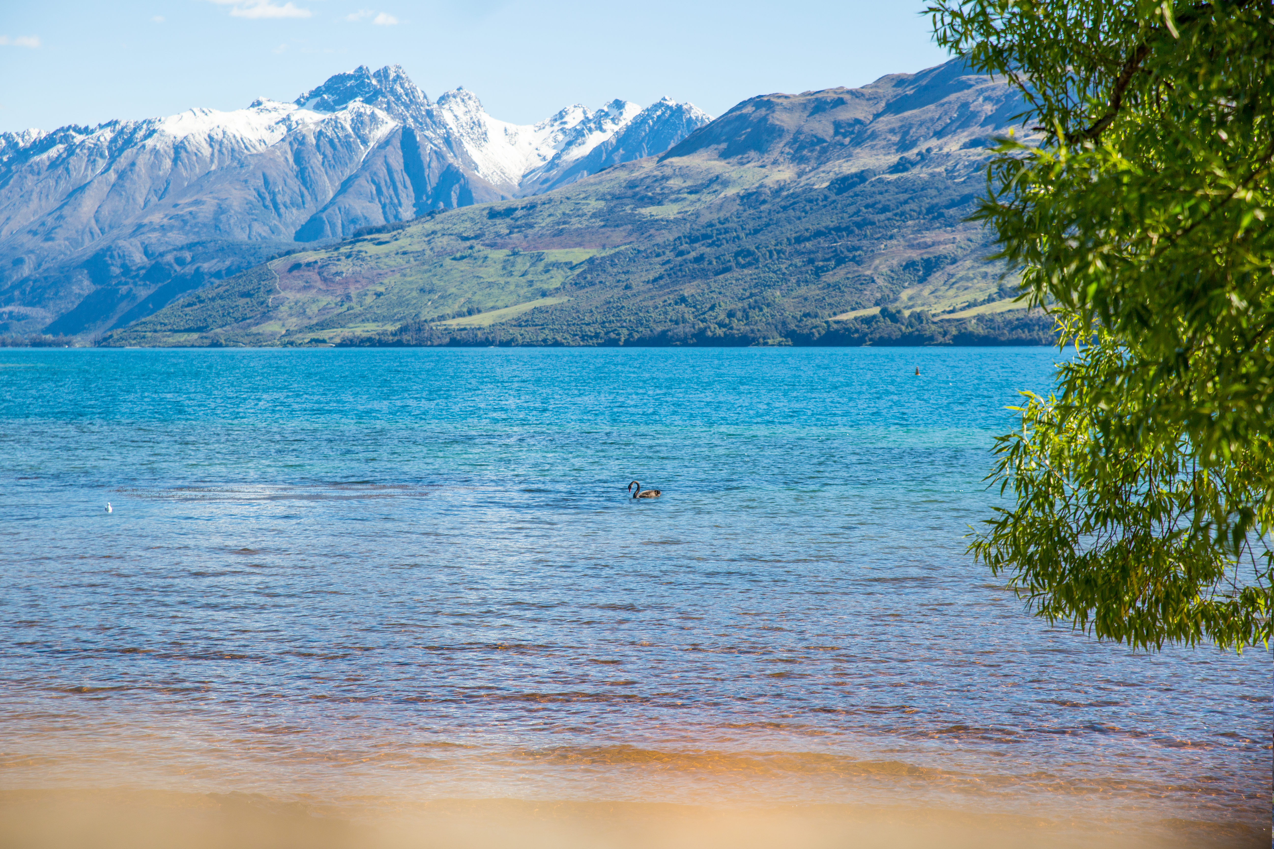 Landscape Photo of Body of Water With Mountain As Background