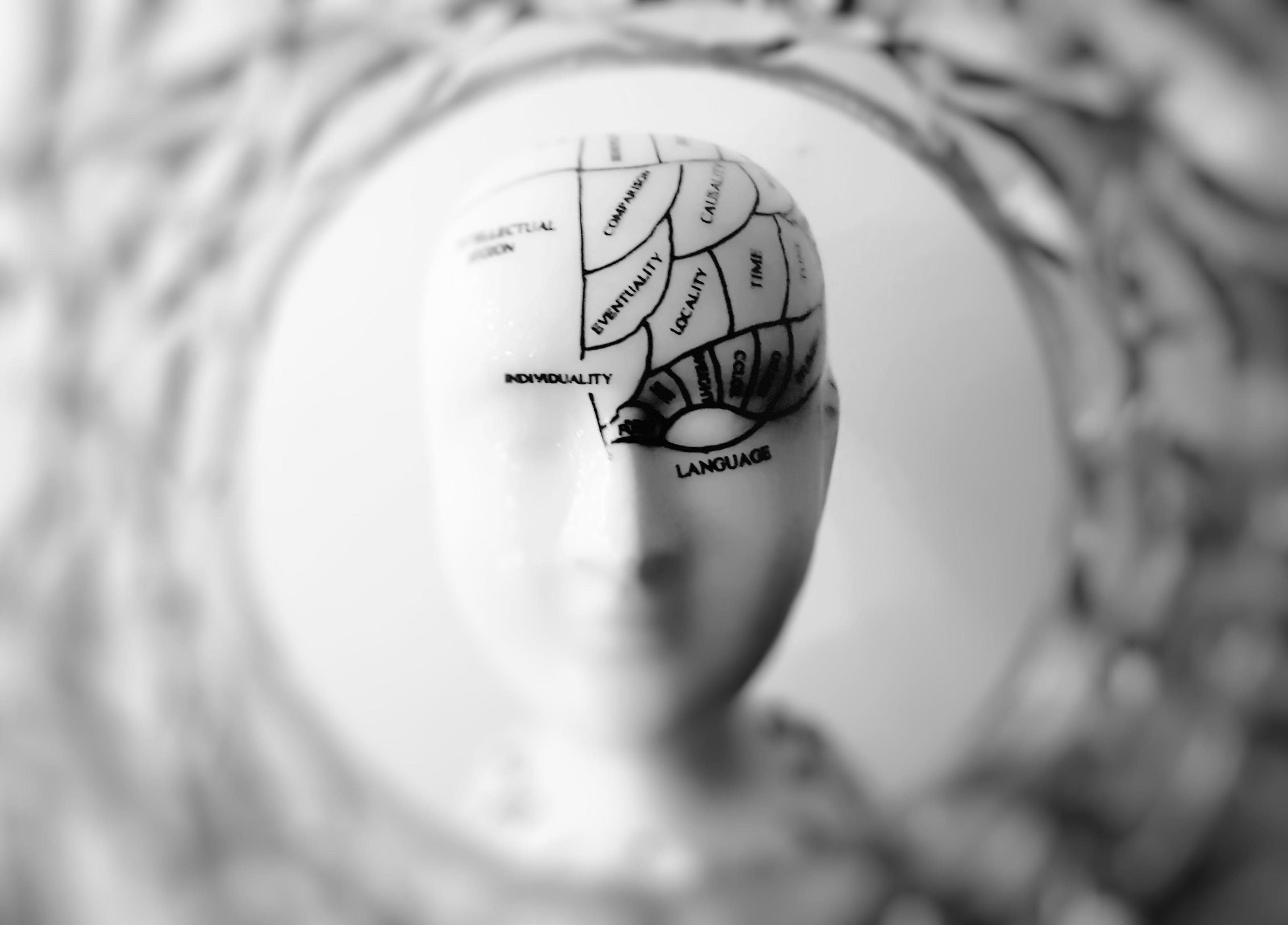 Fotos de stock gratuitas de Arte, blanco y negro, cerebro, concentrarse