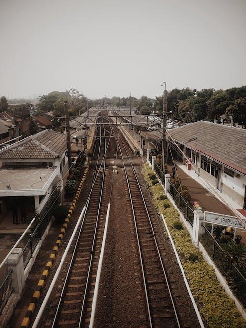 Train Rail Tracks Near Trees