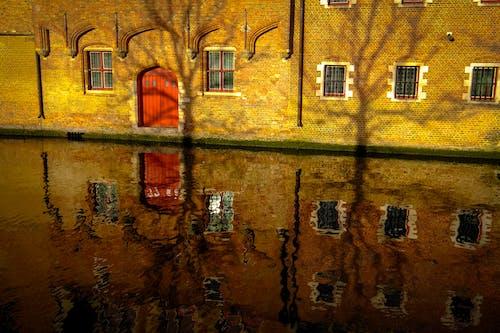 Základová fotografie zdarma na téma architektura, budova, dveře, fasáda