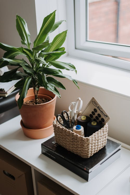 Thread spools with scissors for sewing in wicker basket placed on windowsill with green potted houseplant near window in room