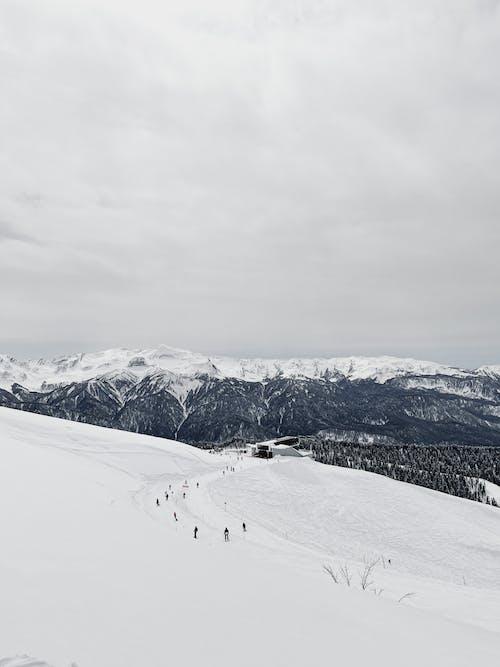 Imagine de stoc gratuită din călătorie, ceață, deal