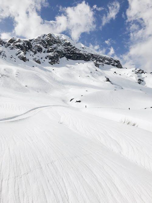 冬季, 冰, 冰河 的 免费素材图片