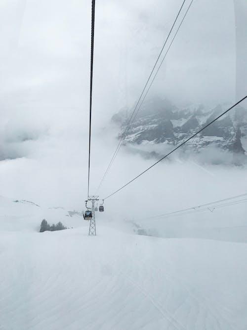 Imagine de stoc gratuită din ceață, frig, furtună de zăpadă