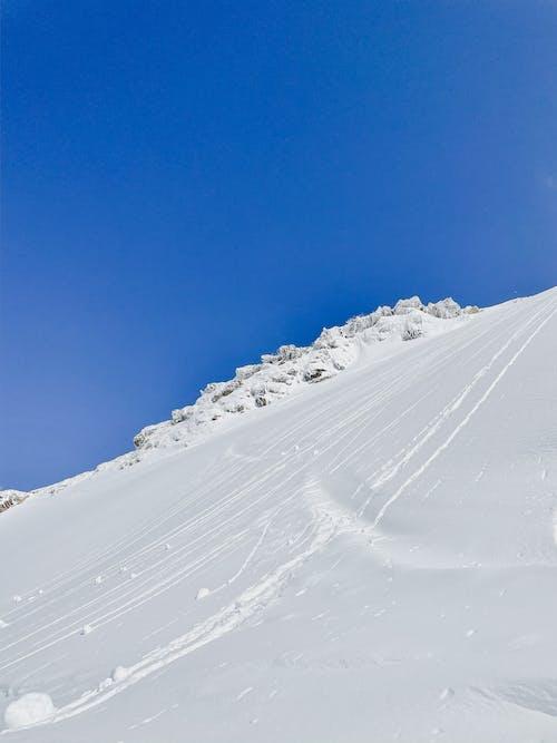 冒險, 冬季, 冰 的 免费素材图片
