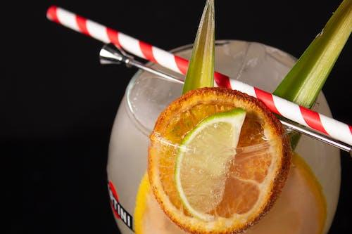 Imagine de stoc gratuită din băutură, citrice, cocktail