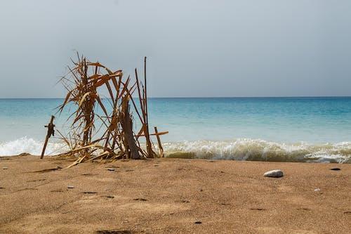 Darmowe zdjęcie z galerii z grecja, kyparissia, miłość, morze