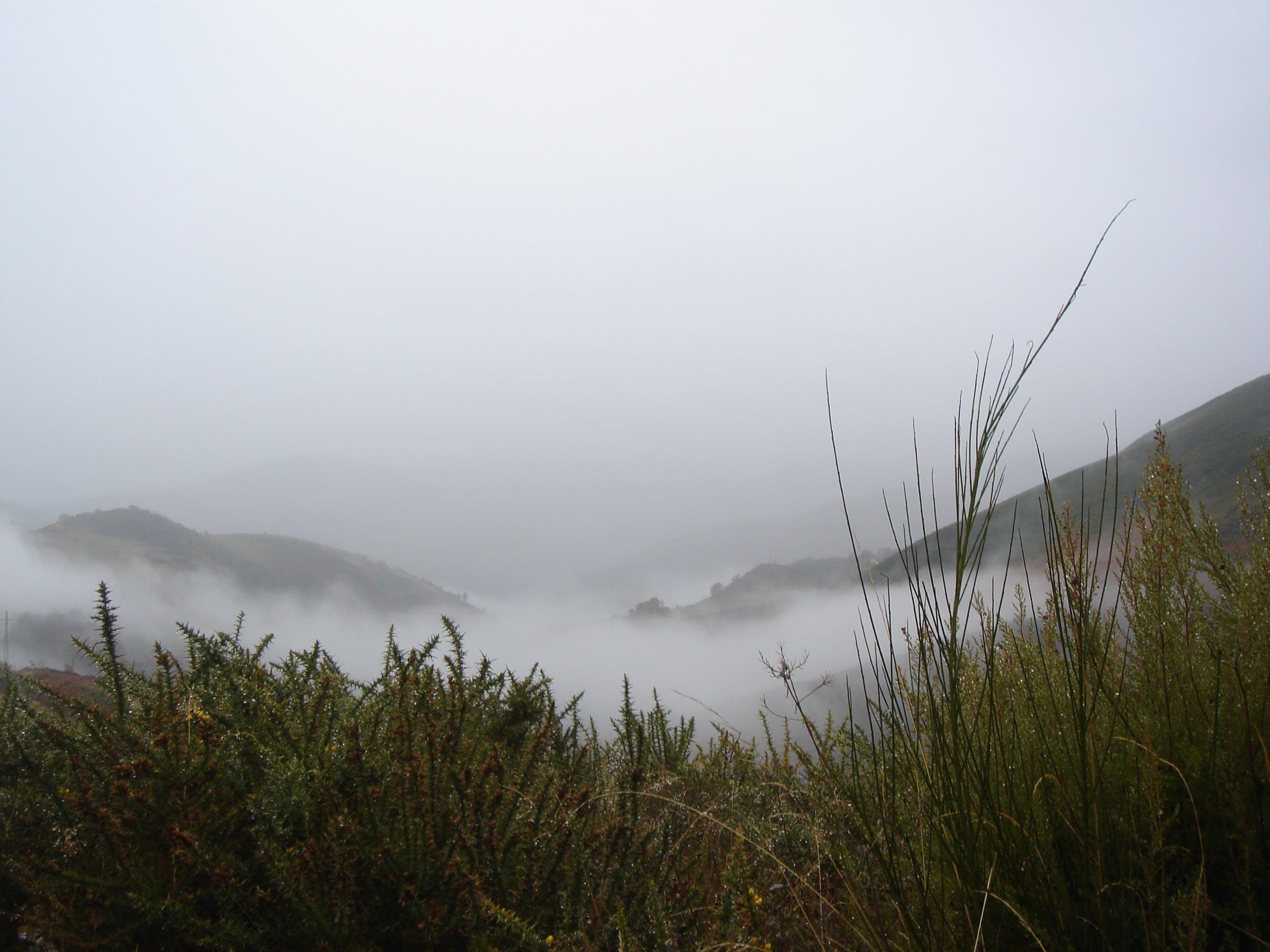 Free stock photo of paisaje