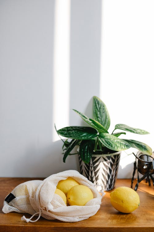 Heap of ripe yellow lemons in eco friendly sack placed near wall on wooden table with green plant in light room