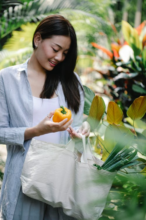Cheerful young Asian female in casual clothes collecting fresh yellow bell peppers in lush sunny garden during harvesting season