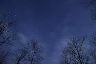 sky, night, trees