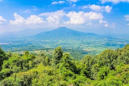 Gratis stockfoto met achtergrond, berg, bergen, bomen