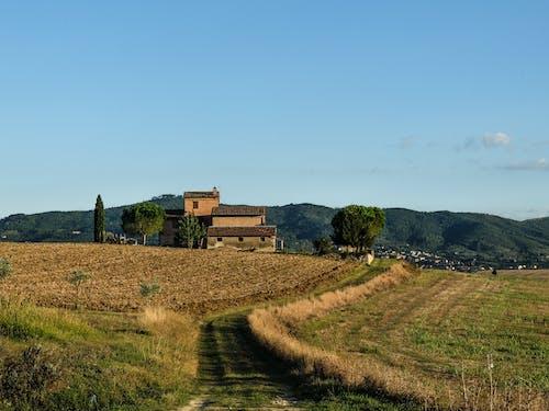 Photos gratuites de agriculture, amoureux de la nature, architecture