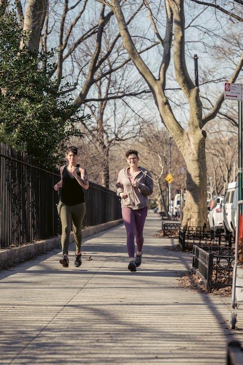açık hava, activewear, ağaç içeren Ücretsiz stok fotoğraf