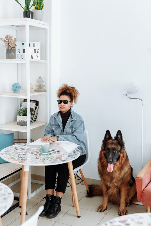 Woman in Gray Blazer Sitting on Chair Beside Brown Dog
