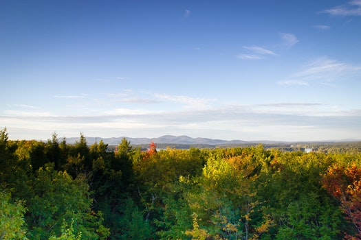 Free stock photo of mountains, nature, trees, autumn