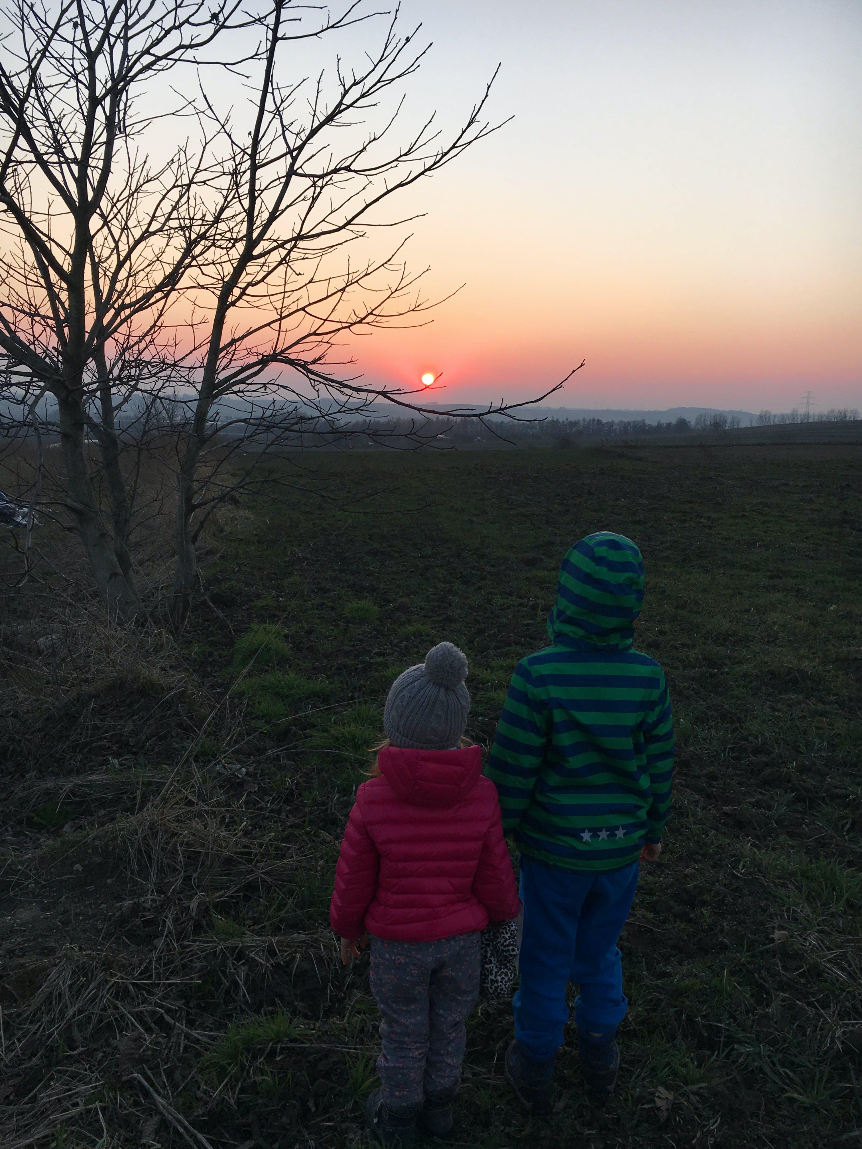 Free stock photo of sunset, kids