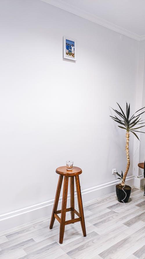 Fotos de stock gratuitas de alojamiento, apartamento, brillante