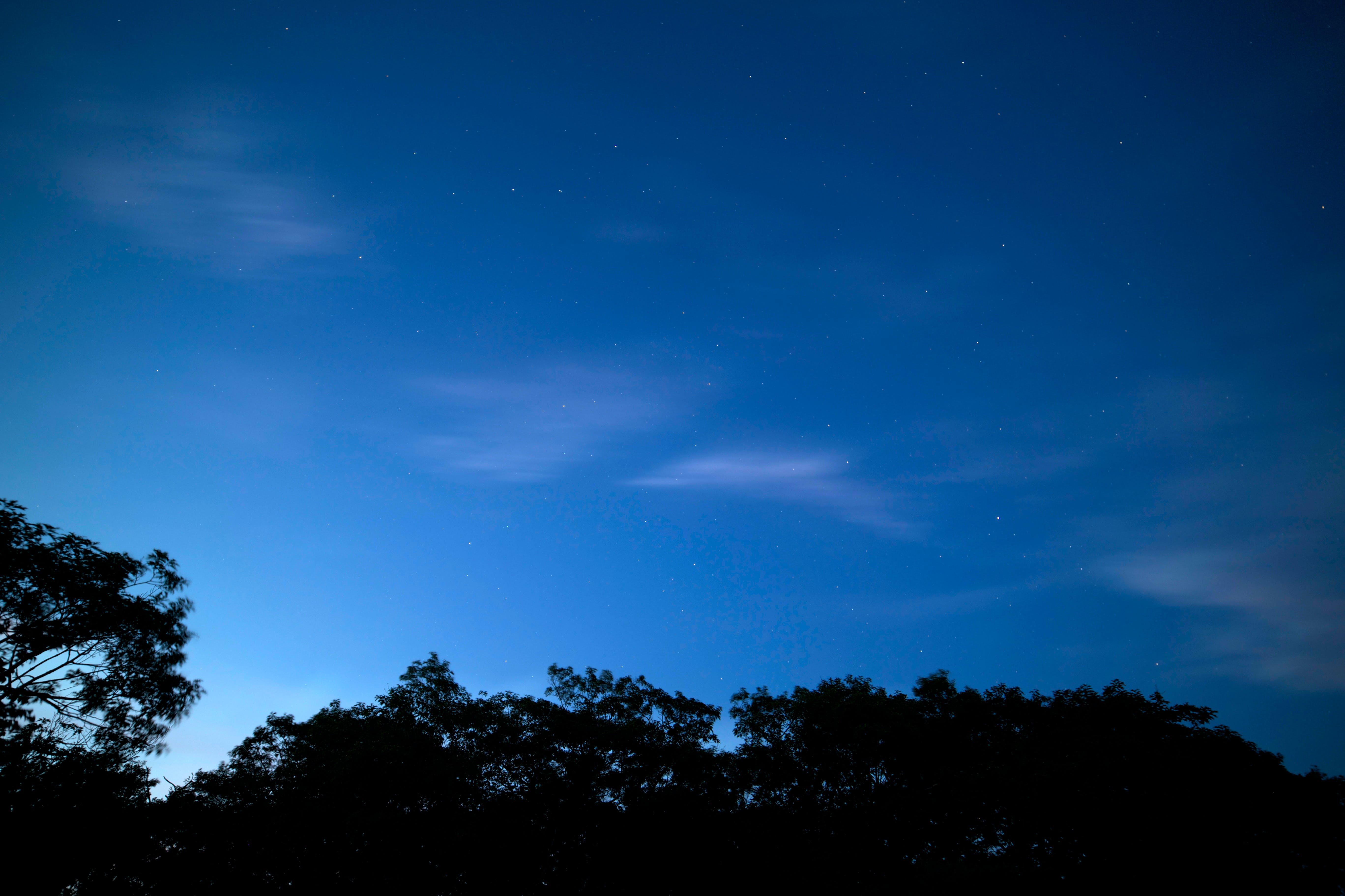 天空, 明星, 晚上 的 免费素材照片