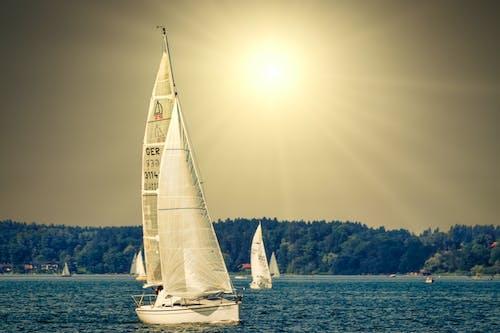 夏季, 帆船, 水 的 免费素材图片