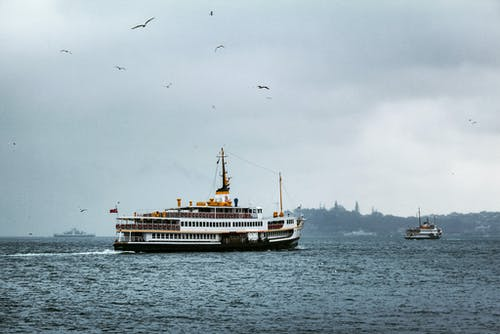 Seagulls Flying Above White Ship on Sea During Gloomy Weather