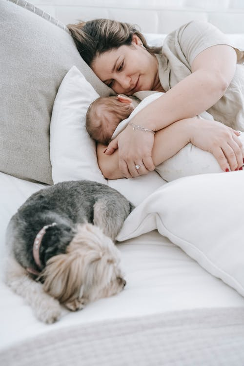Caring mother hugging infant baby while lying on comfortable bed with cushions and cute morkie dog in bedroom at home