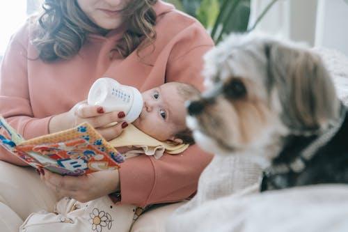 Faceless mother feeding newborn baby near dog