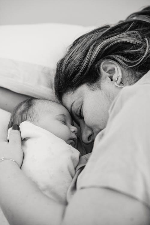 Photos gratuites de à l'intérieur, adorable, affection