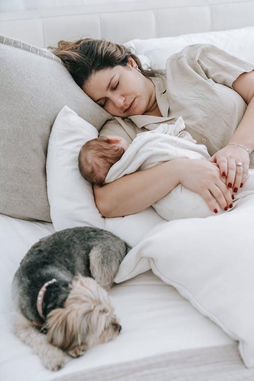 Бесплатное стоковое фото с в помещении, время отхода ко сну, диван