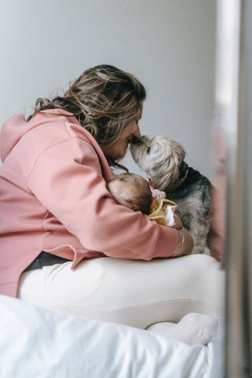 Бесплатное стоковое фото с вертикальный выстрел, женщина, любитель домашних животных