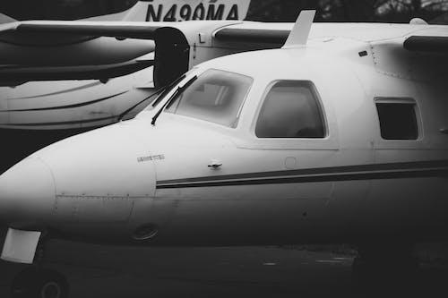 Fotobanka sbezplatnými fotkami na tému cestovanie, čierna a biela, hmla, let