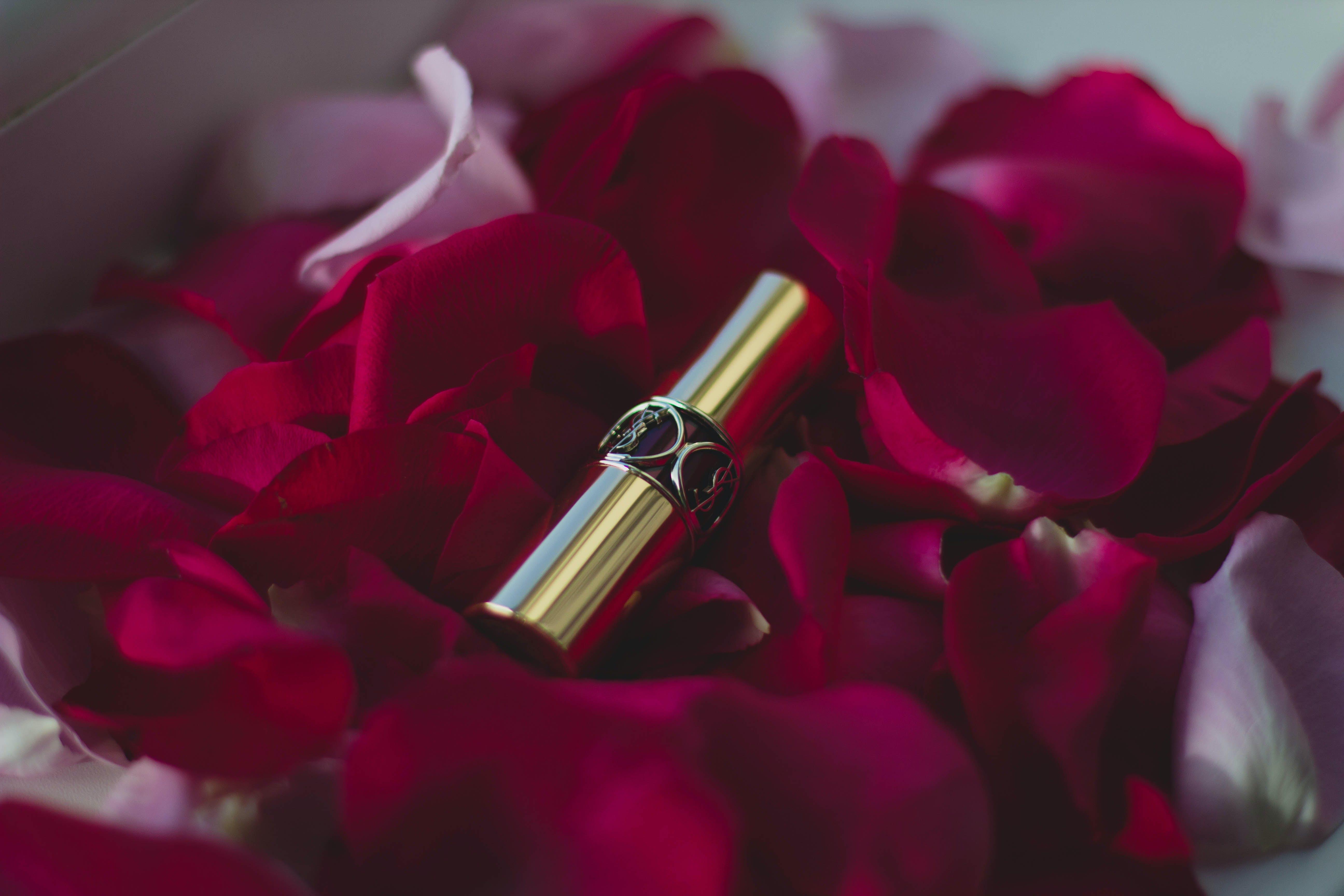 Foto d'estoc gratuïta de bonic, colors, daurat, flors