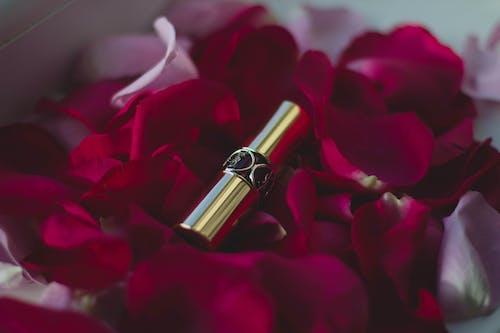 Immagine gratuita di bellissimo, colori, fiori, oro