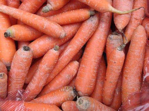 Immagine gratuita di carote, cibo, fotografia di cibo