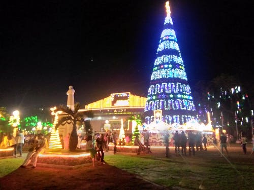 Free stock photo of christmas, christmas lights, christmas tree, enjoyment