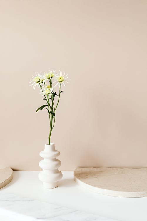 Безкоштовне стокове фото на тему «білий, ваза, вертикальний»
