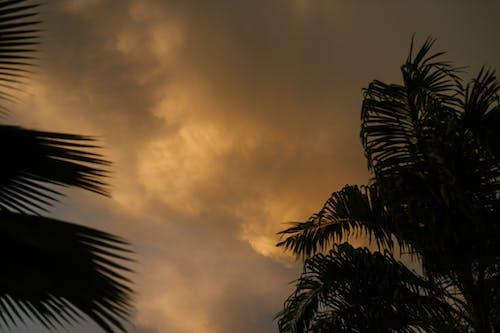 Gratis stockfoto met atmosfeer, avond, bewolkt