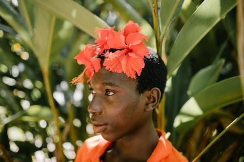 Foto d'estoc gratuïta de a l'aire lliure, africà, amable