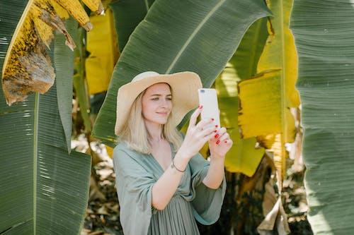 Základová fotografie zdarma na téma banán, cestovní ruch, chlad