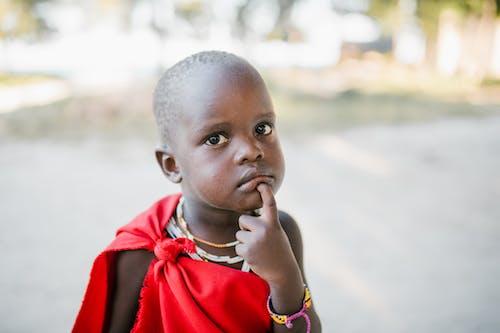 Immagine gratuita di adorabile, africa, attento